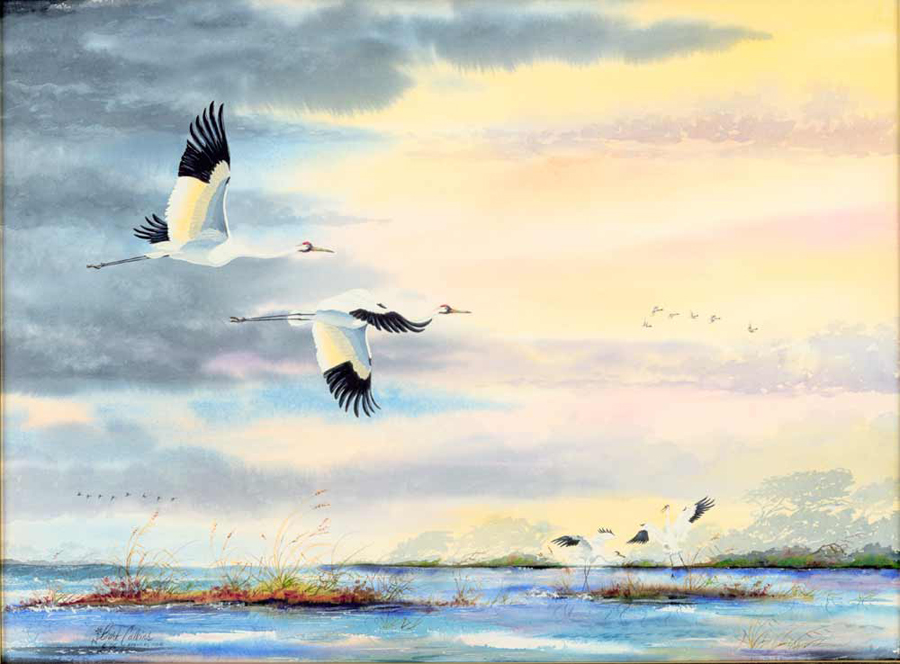 Whooping Crane Art