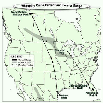 Whooping Crane Migration Routes